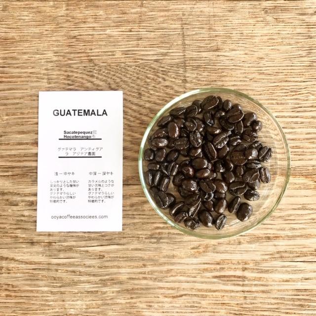 オオヤコーヒ 今月のお豆はグァテマラの中深